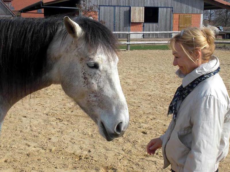 Dagmar Fuchs - Coaching mit Pferden