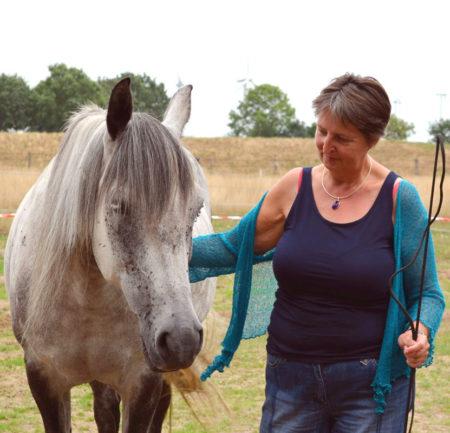 Einzelcoaching intensiv mit Pferden